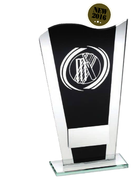 Cricket Trophy - Black Glass